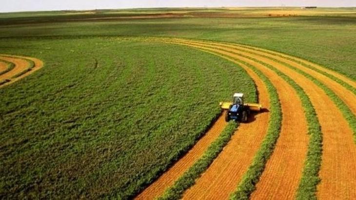 Salgın sürecinde gıda ve tarıma azami önem verilmeli
