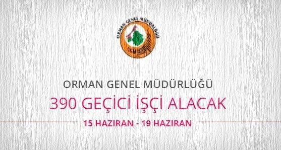 Orman Genel Müdürlüğü 390 geçici işçi alacak