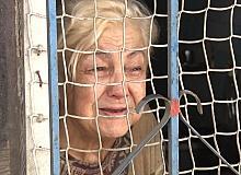 Evini su basan yaşlı kadın 20 kedisi için ağladı; evden çıkmak istemedi