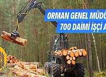 Orman Genel Müdürlüğü 700 daimi işçi alıyor