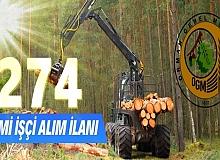 Orman Genel Müdürlüğü 274 Daimi İşçi alıyor